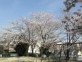 小束山本町2