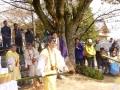龍華祭14