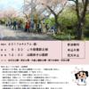 垂水観光ボランティアと歩く③「舞子さくらの回廊」2017年4月7日(金)