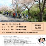 2018年春 垂水観光ボランティアと歩く③「舞子さくらの回廊」2018年4月6日(金)