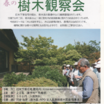 春の樹木観察会 2018年5月9日(水) 旧木下家住宅
