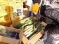 新鮮野菜の販売