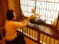 茶室の待合のやさしい日差しに花が似合う