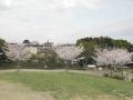 苔谷公園4
