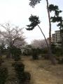 舞子墓園1