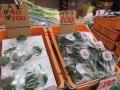 和田商店09