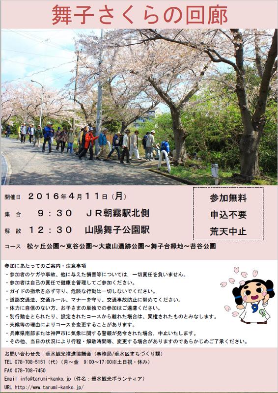 2016 桜の回廊