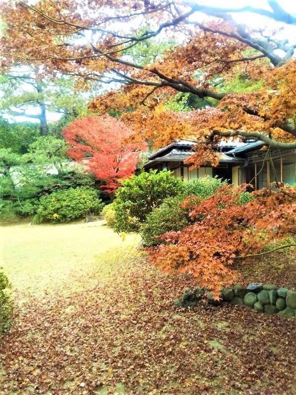 昭和の文化が身近に 旧木下家住宅