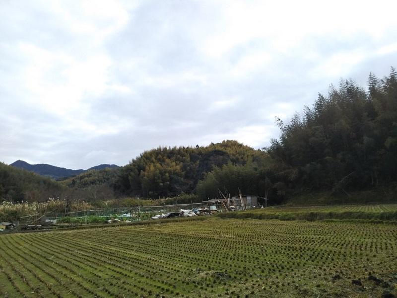 第5回福田川さんぽ「冬の小川をゾロゾロ行くよ」に参加しました。